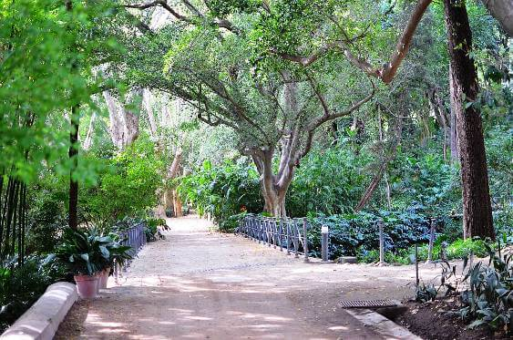 Jardín Botanico La Concepción Malaga