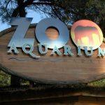 Madrid. In visita allo Zoo Aquarium della Casa de Campo