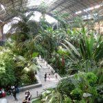 A Madrid per scoprire il patrimonio geologico, paleontologico e mineralogico