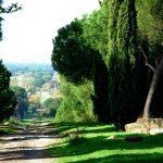 Le strade consolari di Roma: alla scoperta dell'Appia Antica