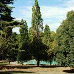 Villa Borghese il più amato e vivo parco di Roma