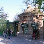 Cosa fare a Berlino: scoprire lo Zoo più popolare d'Europa