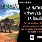 Roma. Animals conoscere gli animali rispettandoli
