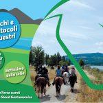 Due giorni dedicati ai cavalli a Bilancino