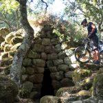Ferragosto 2018: la proposta di Foresta Burgos