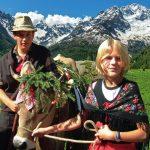 Sondrio: la Festa dell'Alpeggio celebra il ritorno delle mandrie