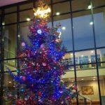 Lo spirito natalizio conquista l'Assemblea legislativa della Regione Emilia-Romagna