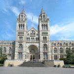 Museo di Storia Naturale di Londra tra i più belli e visitati del mondo