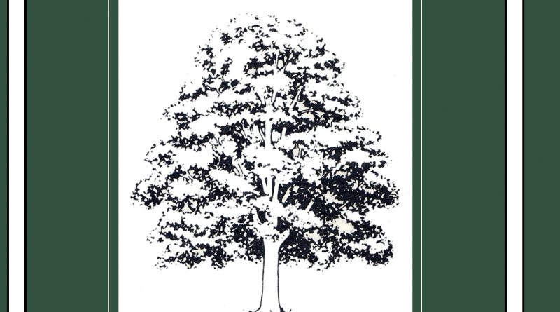 In libreria racconti inediti di F.S.Fitzgerald e R.Lardner