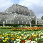 Kew Gardens: le meraviglie botaniche di Londra