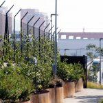Giardino Lineare di Cornigliano: il nuovo parco urbano di Genova